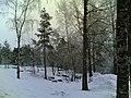 Luminen maisema Sakara 2 - panoramio.jpg