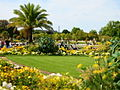 Luxemburg Garten Palmen.JPG