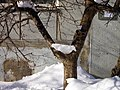 Lyovintsy, Kirovskaya oblast', Russia, 612079 - panoramio (51).jpg