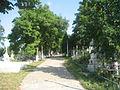 Mănăstirea Podgoria Copou8.jpg
