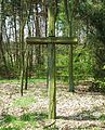 MOs810 WG 15 2016 (Pyzdry Forest II) (Lazinsk Drugi, old evangel. cemetery) (4).JPG