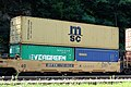 MSC container train.jpeg