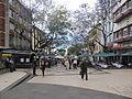 Madeira em Abril de 2011 IMG 1688 (5663725640).jpg