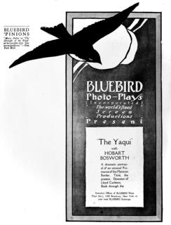 <i>The Yaqui</i> The Yaqui is a 1916 melodrama movie directed by Lloyd B. Carleton
