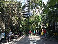 Main Atrium U.S. Botanic Garden.jpg