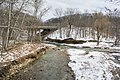 Main and east branch confluence - Euclid Creek Reservation.jpg