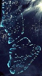 Malosmadulu Atolls, Maldives