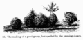 Manual of Gardening fig016.png