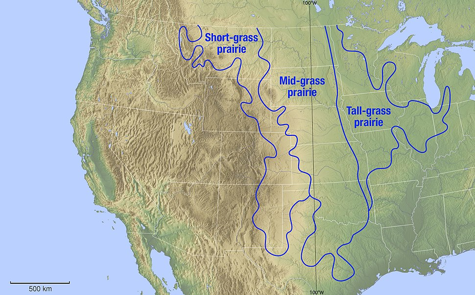 Map of the grassland ecoregions of the United States