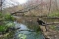Massapequa Creek uncut 2021 (1) jeh.jpg