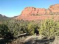Mescal Trail, Sedona, Arizona - panoramio (7).jpg