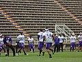 Minnesota Vikings Practice Defense 2014.jpg
