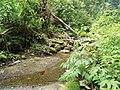 Mokndoma, West Papua (10.3897-zookeys.665.11792) Figure 1.jpg