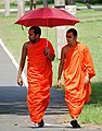 Monks outside Ruvanvelisaya Dagoba - Anuradhapura - Sri Lanka (13964697377).jpg