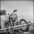 Monterey County, California. Rural youth. Mechanization, the agricultural employee. This young man is so skillful in... - NARA - 532178.tif