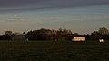 Mooncow - panoramio.jpg