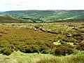 Moorland above Farndale - geograph.org.uk - 895135.jpg