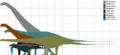 Morrison Formation Dinosaur Sizes.png