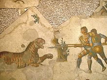 A 5th-century mosaic in the Great Palace of Constantinople depicts two venatoresfighting a tiger.