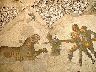Tigre et l'homme dans TIGRE 320px-Mosaic_museum_Istanbul_2007_011