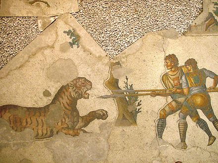 Two venatores fighting a tiger (5th century CE mosaic in the Great Palace of Constantinople) - List of Roman gladiator types
