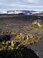 Mount Roraima, Venezuela (12372906414).jpg
