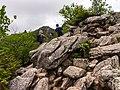 Mt.Kinposan(Kinpohsan) 20130707-P7070102 (9254131779).jpg
