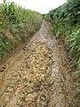 Muddy track, Huish - geograph.org.uk - 942120.jpg