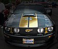 Mustang (3642669160).jpg