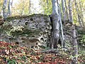 Mykolaivs'kyi district, Lviv Oblast, Ukraine - panoramio - Rostislaw . (1).jpg