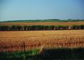 NRCSSD01031 - South Dakota (6081)(NRCS Photo Gallery).tif
