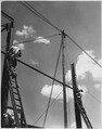 NYA-Louisiana-men standing on ladders working on metal building structure - NARA - 196045.tif