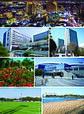 Narashino montage.jpg