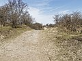 Nationaal Park Kennemerland (27499033108).jpg