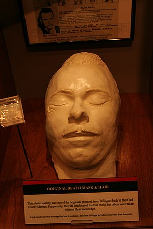 John Dillinger - A Dillinger death mask made from an original mold, and eyebrow hair, on display at the Crime Museum in Washington, D.C. Note the bullet exit mark below the right eye.