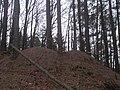 Natur Pfälzerwald bei Waldleiningen.jpg