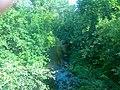 Nature in Kamensk-Uralsky. 2.jpg
