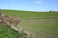 Near Knaps of Bedlam - geograph.org.uk - 1304243.jpg