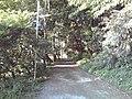 Near Sodegaura Public Library - panoramio (1).jpg