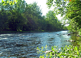 Neversink River at Cuddebackville.jpg
