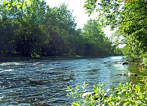 Neversink River - The Neversink near Cuddebackville