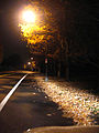 Night Road (2027938816).jpg