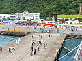 No.12 Pier and Event Ground Birdview from Fong Yang (FFG-933) 20130504a.jpg