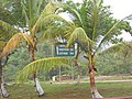 No 58 Rest Point on the Mabura Road - panoramio.jpg