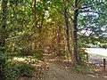 Norbury Park, Mole Gap Trail.jpg