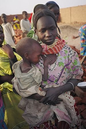 Bibliography of the War in Darfur - IDP mother and malnourished child in North Darfur