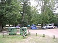Northern end of Hollands Wood camp site, New Forest - geograph.org.uk - 43408.jpg