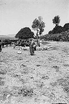 Dothan Ancient City Wikipedia