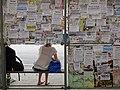 Notices at Bus Stop on Sobornyi Avenue - Zaporozhye - Ukraine (44045070502).jpg