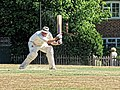 Nuthurst CC v. Henfield CC at Mannings Heath, West Sussex, England 003.jpg
